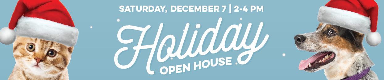 Holiday Open House 2019 slider